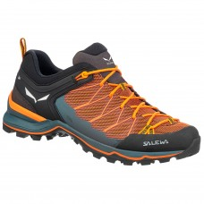 Salewa MS MTN Trainer Lite